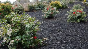 Goodwood Garden Mulch