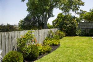 Black Mulch in garden left